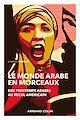 Télécharger le livre : Le monde arabe en morceaux - 2e éd.