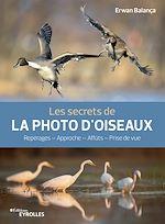 Download this eBook Les secrets de la photo d'oiseaux