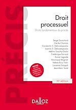 Téléchargez le livre :  Droit processuel. Droits fondamentaux du procès - 10e éd.