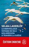 Télécharger le livre :  Le Merveilleux voyage de Nils Holgersson à travers la Suède