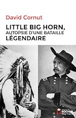 Download this eBook Little Big Horn