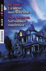 Téléchargez le livre :  Un secret dans la brume - Surveillance clandestine