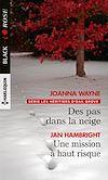 Télécharger le livre :  Des pas dans la neige - Une mission à haut risque