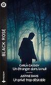 Télécharger le livre :  Un étranger dans la nuit - Un privé trop désirable