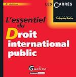 Download this eBook L'essentiel du droit international public - 4e édition