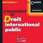 Download this eBook L'essentiel du droit international public. 6e éd.