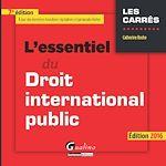 Download this eBook L'essentiel du droit international public - 7e édition 2016