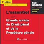 Download this eBook L'essentiel des grands arrêts de droit pénal et de procédure pénale