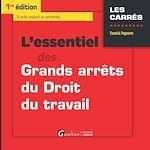 Download this eBook L'essentiel des grands arrêts du droit du travail - 1e édition