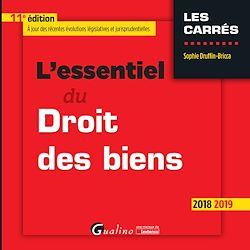 Download the eBook: L'essentiel du Droit des biens