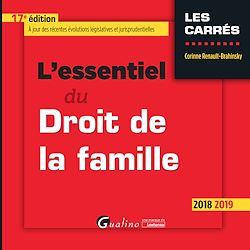 Download the eBook: L'essentiel du Droit de la famille