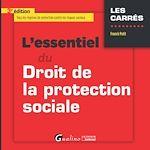 Download this eBook L'essentiel du droit de la protection sociale - 3e édition