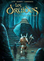 Téléchargez le livre :  Les Druides T05