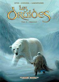 Téléchargez le livre :  Les Druides T06