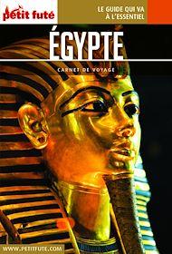Téléchargez le livre :  Egypte 2019 Carnet Petit Futé