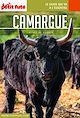 Télécharger le livre : CAMARGUE 2020 Carnet Petit Futé