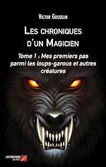 Download this eBook Les chroniques d'un Magicien