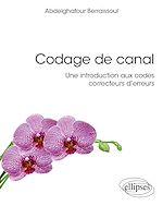 Download this eBook Codage de canal : une introduction aux codes correcteurs d'erreurs