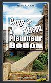 Télécharger le livre :  Coup de grisou à Pleumeur-Bodou