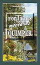 Télécharger le livre : Fontaines mortelles à Quimper