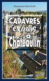 Télécharger le livre :  Cadavres exquis à Châteaulin