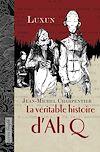 Télécharger le livre :  La véritable histoire d'AhQ