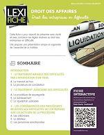 Téléchargez le livre :  Droit des affaires - Droit des entreprises en difficulté
