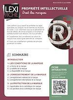 Download this eBook Propriété intellectuelle - Droit des marques