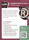 Télécharger le livre :  Droit de la propriété intellectuelle - Droit des marques (2ème édition)