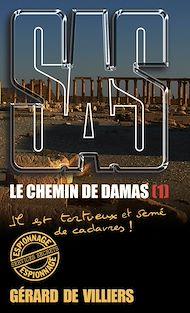 Téléchargez le livre :  SAS 193 Le chemin de Damas T1