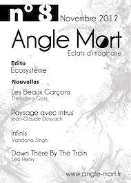 Téléchargez le livre :  Angle Mort numéro 8