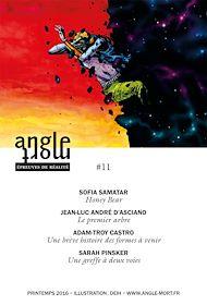 Téléchargez le livre :  Angle Mort numéro 11