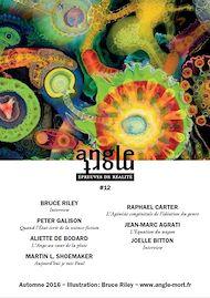 Téléchargez le livre :  Angle Mort numéro 12