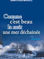 Download this eBook Comme c'est beau la nuit une mer déchaînée
