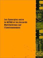 Download this eBook Les synergies entre le NEPAD et les accords multilatéraux sur l'environnement