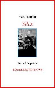 Téléchargez le livre :  Silex