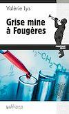 Télécharger le livre :  Grise mine à Fougères