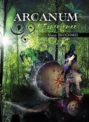 Téléchargez le livre :  Arcanum