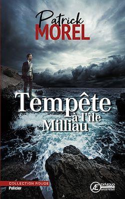 Download the eBook: Tempête à l'île Milliau