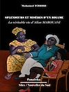 Télécharger le livre :  Splendeurs et misères d'un bigame