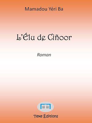 Téléchargez le livre :  L'Élu de Ciñoor