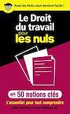 Télécharger le livre :  Le Droit du travail pour les Nuls en 50 notions clés - L'essentiel pour tout comprendre