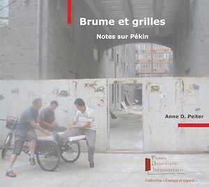 Téléchargez le livre :  Brume et grilles