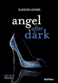 Téléchargez le livre :  Angel after dark Vol.1