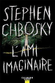 Téléchargez le livre :  L'ami imaginaire