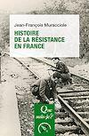 Télécharger le livre :  Histoire de la Résistance en France