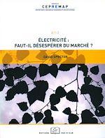 Téléchargez le livre :  Électricité : faut-il désespérer du marché ?