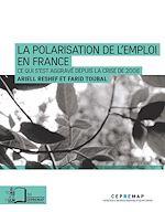 Téléchargez le livre :  La Polarisation de l'emploi en France