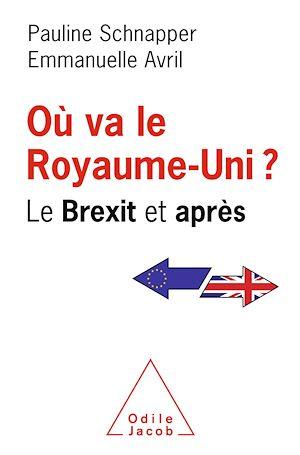 Image de couverture (Où va le Royaume-Uni ? : le Brexit et après)