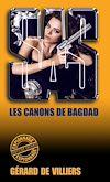 Télécharger le livre :  SAS 100 Les canons de Bagdad